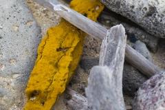 Bonaire plastic soup - Peter Bontan-7061